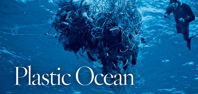 http://robertarood.files.wordpress.com/2008/02/plastic-ocean.jpg
