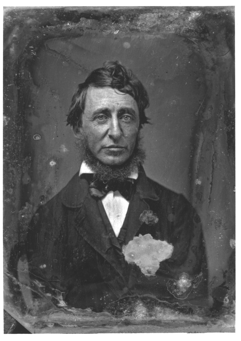 henry david thoreau In his book walden, henry david thoreau declared his love of nature, simplicity, and independence although most people know about thoreau's time in walden woods, as well as his .