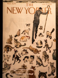 """Herding Cats,"" by Barry Blitt"