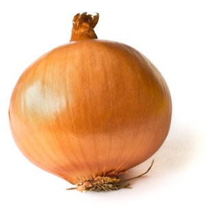Onion_on_White